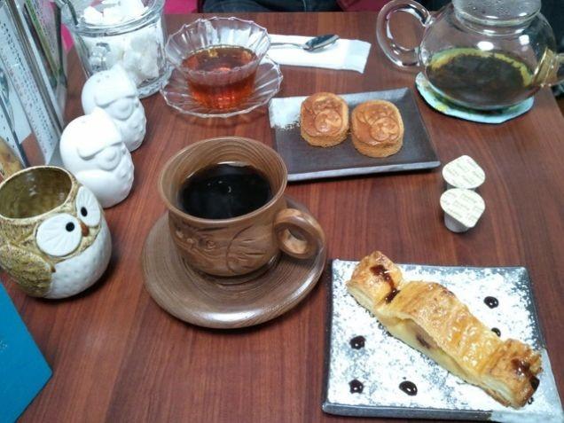 Японское заведение Owl Cafés - настоящий рай для любителей сов